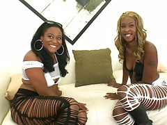 Two ebony babes Asa and Candee having a chat