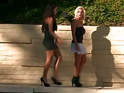 Pornstar punishment with Lylith and her friend
